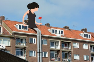 Rose on the roof